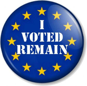 I VOTED REMAIN Pinback Button Badge EU Flag YES European Union Referendum Brexit